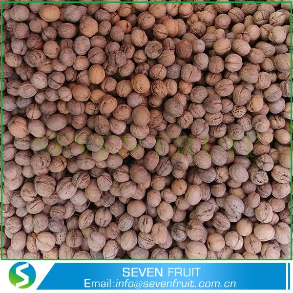 Large Size Walnuts Walnuts In Shell Walnuts With Shell Cheap Walnuts In